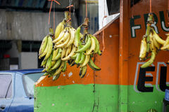 Banana market in Central america. Bananas are hanging next to small local colorful shop or kiosk as a promotional material indicating fresh and freshly picked Royalty Free Stock Photos