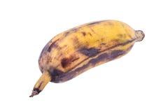 Banana matura su fondo bianco Fotografie Stock