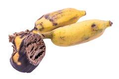 Banana matura su fondo bianco Immagini Stock