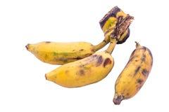 Banana matura su fondo bianco Immagini Stock Libere da Diritti