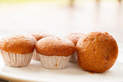 Banana muffin cake on white plate Royalty Free Stock Images
