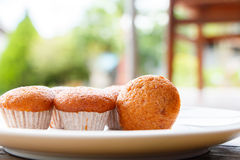 Banana muffin cake on white plate Royalty Free Stock Photography