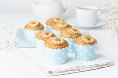 Banana muffin, cupcakes in blue cake cases paper, white concrete table. Banana muffin, cupcakes in a blue cake cases paper, white concrete table royalty free stock image