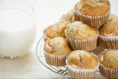 Banana muffin. And fresh milk stock photos