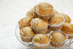 Banana muffin Stock Images