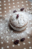 Banana muffin with sunflower seeds and dried cranberries on a napkin with polka dots Stock Photo
