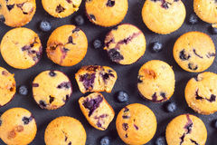Banana muffins with blueberry Royalty Free Stock Photos