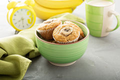 Banana muffins with coffee. Healthy banana muffins with slices on top with coffee stock image