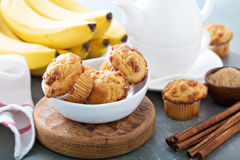 Banana muffins on cooling rack royalty free stock photos