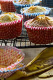 Banana muffins cooling on rack, empty bun cases, banana skin Stock Photography