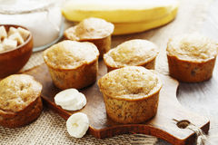 Banana muffins Stock Images