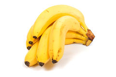 Banana (Musa) royalty free stock photo