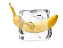 Banana nel cristallo di ghiaccio Fotografia Stock