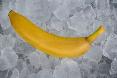 Banana no gelo foto de stock royalty free