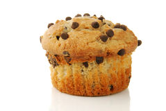 Banana nut muffin with chocolate chips Royalty Free Stock Photography