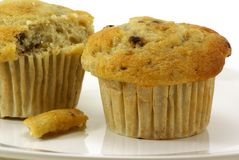 Banana Nut Muffins. Fresh baked moist banana nut muffins on white plate and background Stock Photography