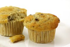 Banana Nut Muffins. Fresh baked moist banana nut muffins on white plate and background Royalty Free Stock Photos