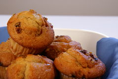 Banana Nut Muffins Stock Image