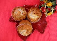 Banana nut muffins on plate Stock Photography