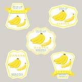banana owocowy potasu bogactwo tropikalny Obrazy Royalty Free