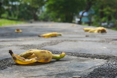 Banana peel left on the pavement. Stock Images
