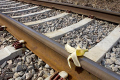 Banana peel on rail way, Humoristic `Sabotage` Royalty Free Stock Photos