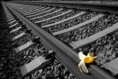 Banana peel on railway.  Train Sabotage  humoristic conceptual image Stock Photos