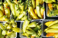 Banana peppers Stock Photography