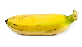 Banana(Pisang Mas) Royalty Free Stock Photo