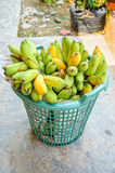 Banana in plastic basket Stock Images
