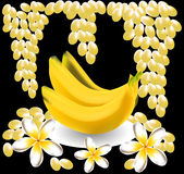 Banana, plumeria, frangipani, grape fruit. Flowers. tropical  still life Stock Photos