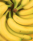 Banana Rama Royalty Free Stock Photos