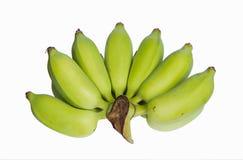 BANANA. Raw banana isolated on white Stock Photography