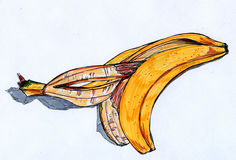 Banana rind sketch Royalty Free Stock Photo