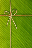 Banana rope and leaf Royalty Free Stock Photos