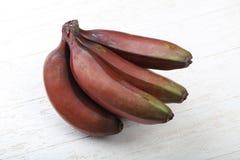 Banana rossa Immagine Stock