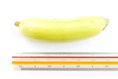 Banana with ruler Stock Image