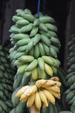 Banana for sale. At a house Stock Image
