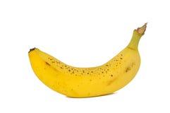 Banana salpicada velha Foto de Stock Royalty Free