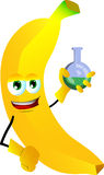 Banana scientist holds beaker of chemicals Stock Images