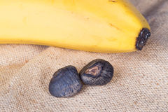 Banana seeds closeup Royalty Free Stock Photos