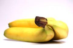 Banana - Selective focus. On stem Royalty Free Stock Photo