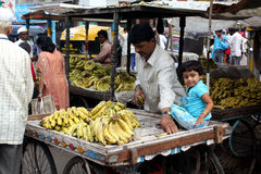 Banana Seller royalty free stock photo