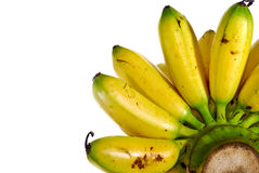 Banana Series 02 Royalty Free Stock Photos