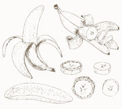 Banana set Obrazy Royalty Free