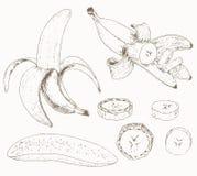 Banana set Royalty Free Stock Images