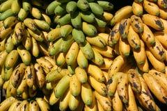 banana siniak Obrazy Royalty Free