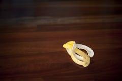 Banana skin Stock Images