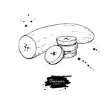 Banana sliced and peeled piece vector drawing.  hand dra Stock Photo