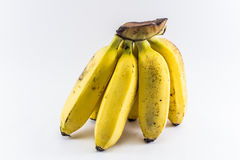 Banana. Small banana on  white background Stock Photography
